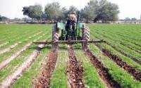 تدوین طرح نظام جامع کشت و کار کشور در صنعت کشاورزی یک ضرورت اساسی است.
